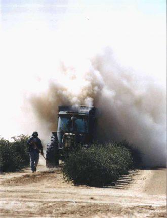 אבק בחצרים – איציק לביא