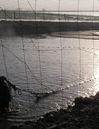 דייגים בזריחה – גולן אפרת